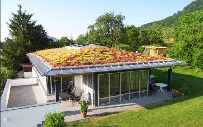 Prečo zelené strechy?